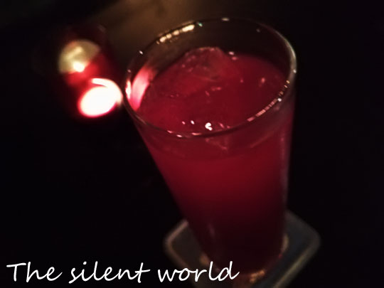The_silent_world.jpg